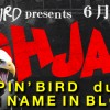 """'16.06.08 [wed] STOMPIN' BIRD presents """"HIGH JACK Vol.23″ STOMPIN' BIRD / dustbox / HER NAME IN BLOOD"""